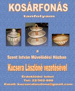 Kosarfonas-2014.-szept